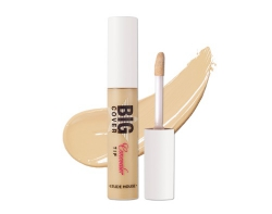 Жидкий консилер [ETUDE HOUSE] Big Cover TIP Concealer