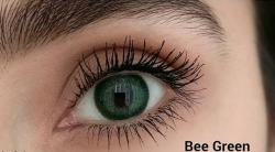 TTDeye Bee Green