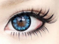 Beauty Eyes Blue (Plum)