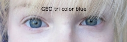 Tri Color Blue