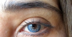 COLOR VISION Blue (Azul)